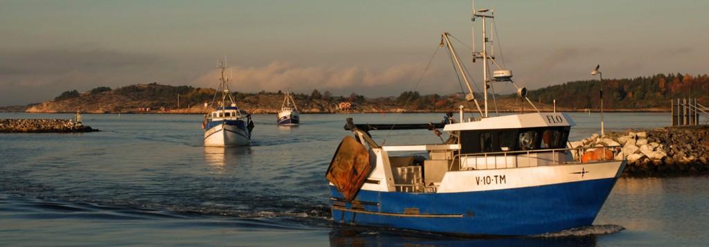 Stor fiskebåt
