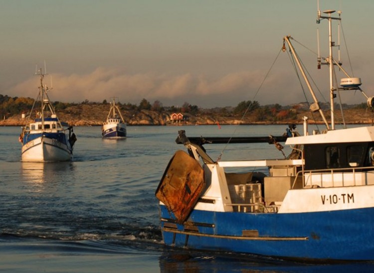 Nya vindar i fiskeripolitiken